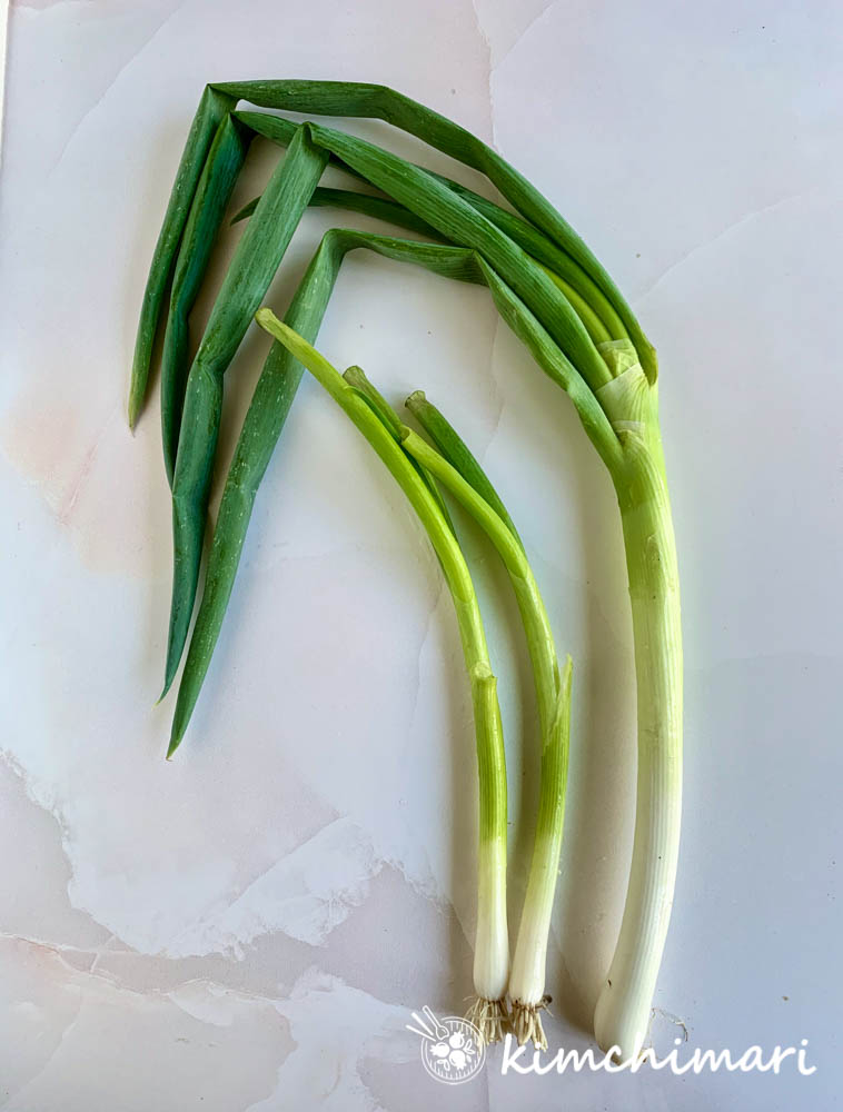 comparison picture of korean leek daepa vs green onions