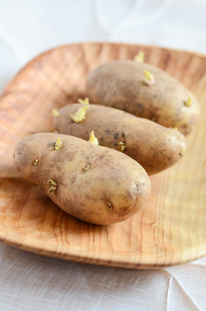 Organic Potatoes with sprouts