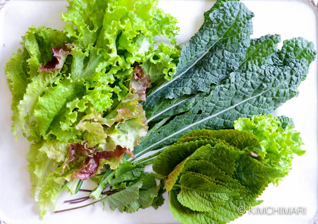 Salad greens of kale, red leaf lettuce, perilla and baby red russian kale from my vegetable garden