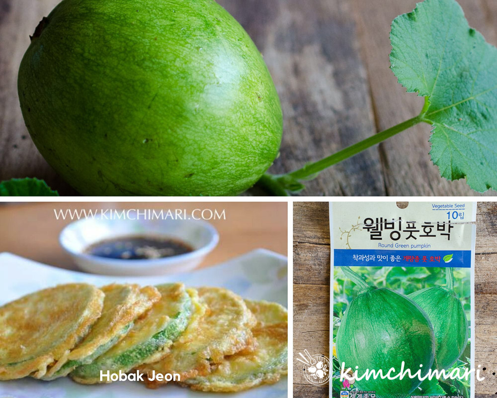 collage image of Korean squash with vine, seed packet and hobak jeon