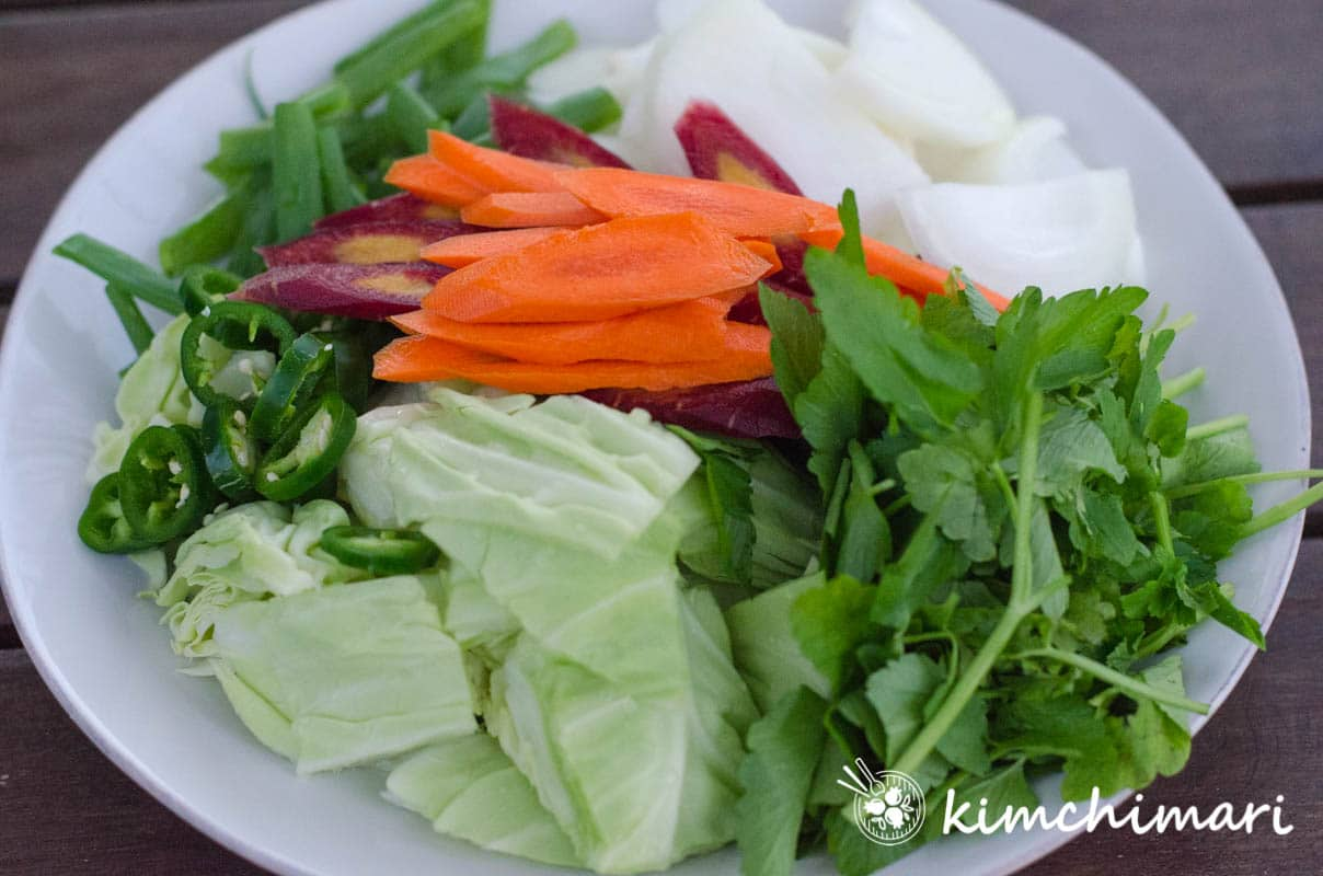 cabbage, onions, carrots, green onions cut and put on white plate