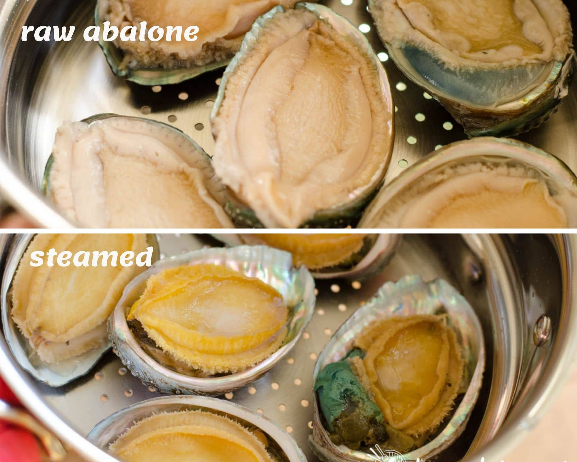 raw vs steamed abalones inside steamer pot